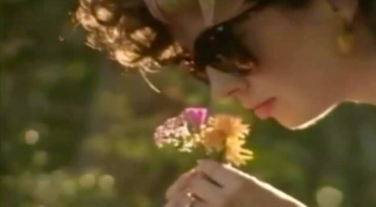 Chris de Burgh - The Lady In Red - Official Music Video
