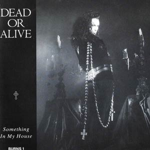Dead Or Alive - Something in My House - Single Cover