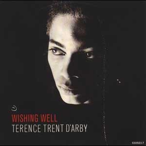 Terence Trend DArby Wishing Well Single cover